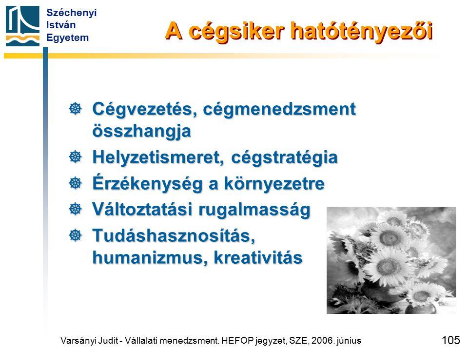 Széchenyi István Egyetem 105 A cégsiker hatótényezői  Cégvezetés, cégmenedzsment összhangja  Helyzetismeret, cégstratégia  Érzékenység a környezetr