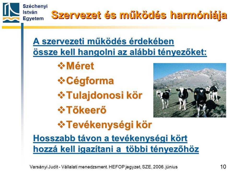Széchenyi István Egyetem 10 Szervezet és működés harmóniája A szervezeti működés érdekében össze kell hangolni az alábbi tényezőket:  Méret  Cégform