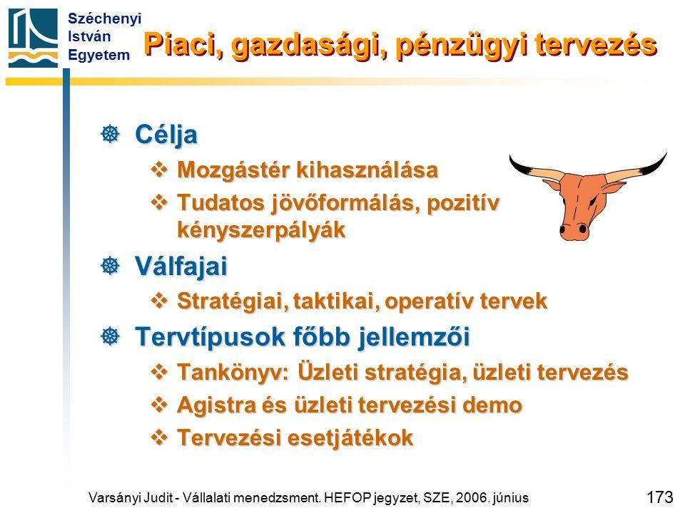 Széchenyi István Egyetem 173 Piaci, gazdasági, pénzügyi tervezés  Célja  Mozgástér kihasználása  Tudatos jövőformálás, pozitív kényszerpályák  Vál