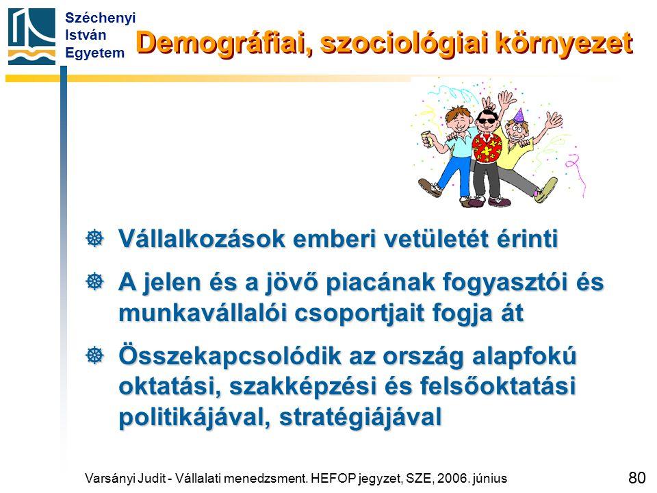 Széchenyi István Egyetem 80 Demográfiai, szociológiai környezet  Vállalkozások emberi vetületét érinti  A jelen és a jövő piacának fogyasztói és mun