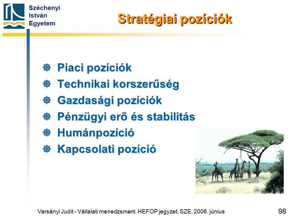 Széchenyi István Egyetem 98 Stratégiai pozíciók  Piaci pozíciók  Technikai korszerűség  Gazdasági pozíciók  Pénzügyi erő és stabilitás  Humánpozí