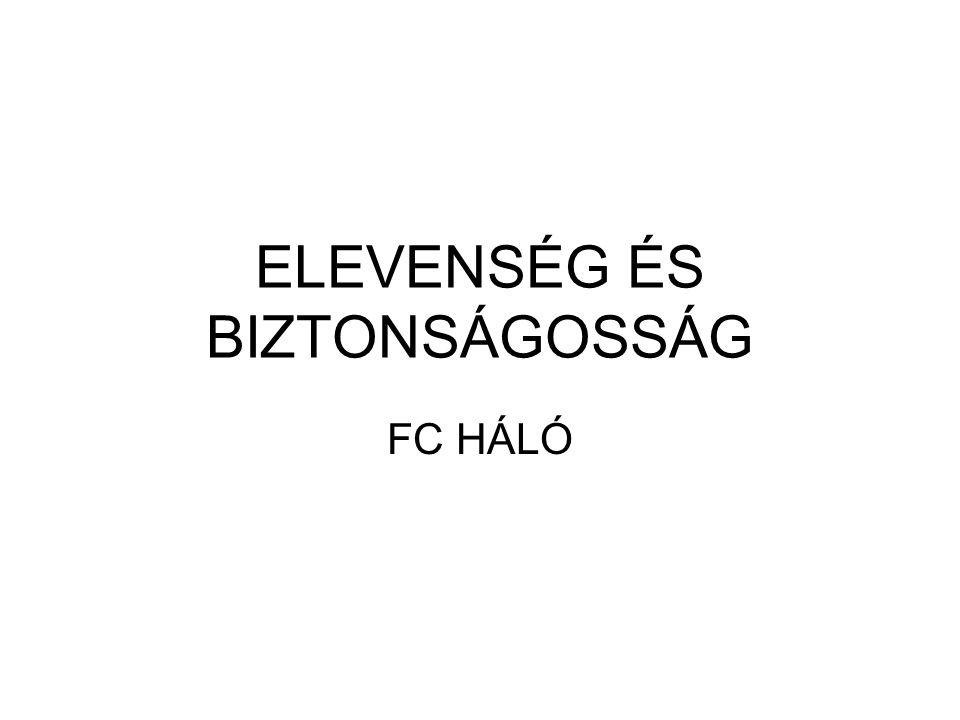 ELEVENSÉG ÉS BIZTONSÁGOSSÁG FC HÁLÓ