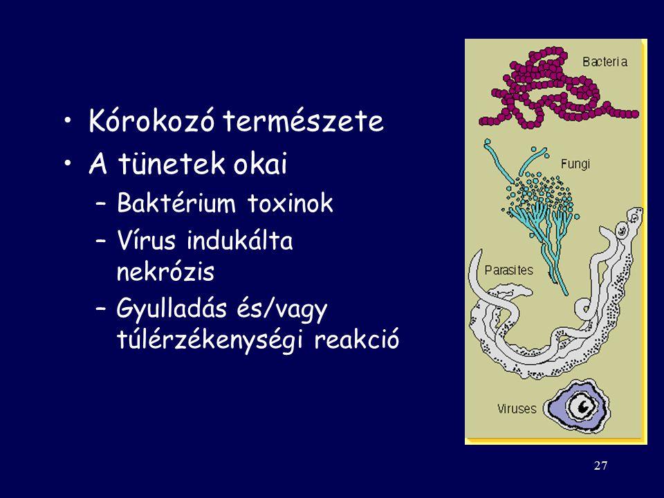 26 Sajátosságok Veleszületett + szerzett Behatolás helye befolyásolja a választ Szövetspecifitás –EBV: B-sejt CR2 receptor –HIV (MPh, T(CD4), kemokinR!)