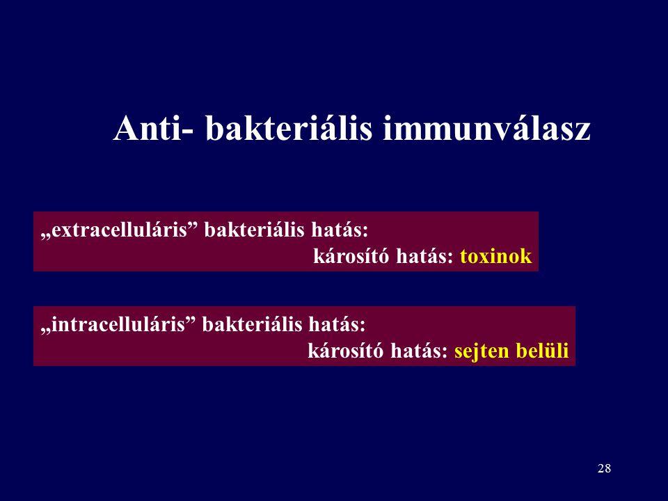 27 Kórokozó természete A tünetek okai –Baktérium toxinok –Vírus indukálta nekrózis –Gyulladás és/vagy túlérzékenységi reakció
