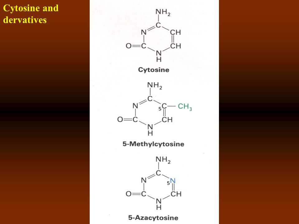 Cytosine and dervatives