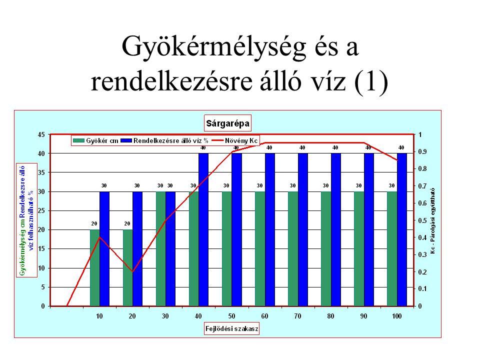 Gyökérmélység és a rendelkezésre álló víz (1)