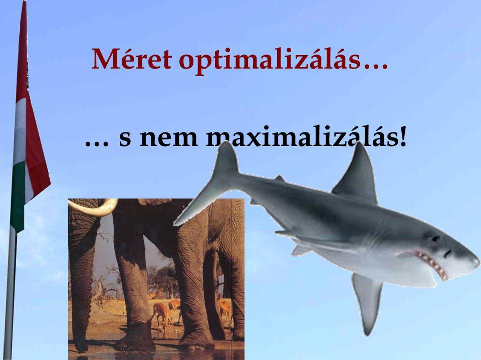 Méret optimalizálás… … s nem maximalizálás!