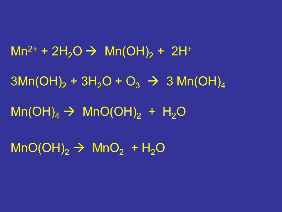 Mn 2+ + 2H 2 O  Mn(OH) 2 + 2H + 3Mn(OH) 2 + 3H 2 O + O 3  3 Mn(OH) 4 Mn(OH) 4  MnO(OH) 2 + H 2 O MnO(OH) 2  MnO 2 + H 2 O