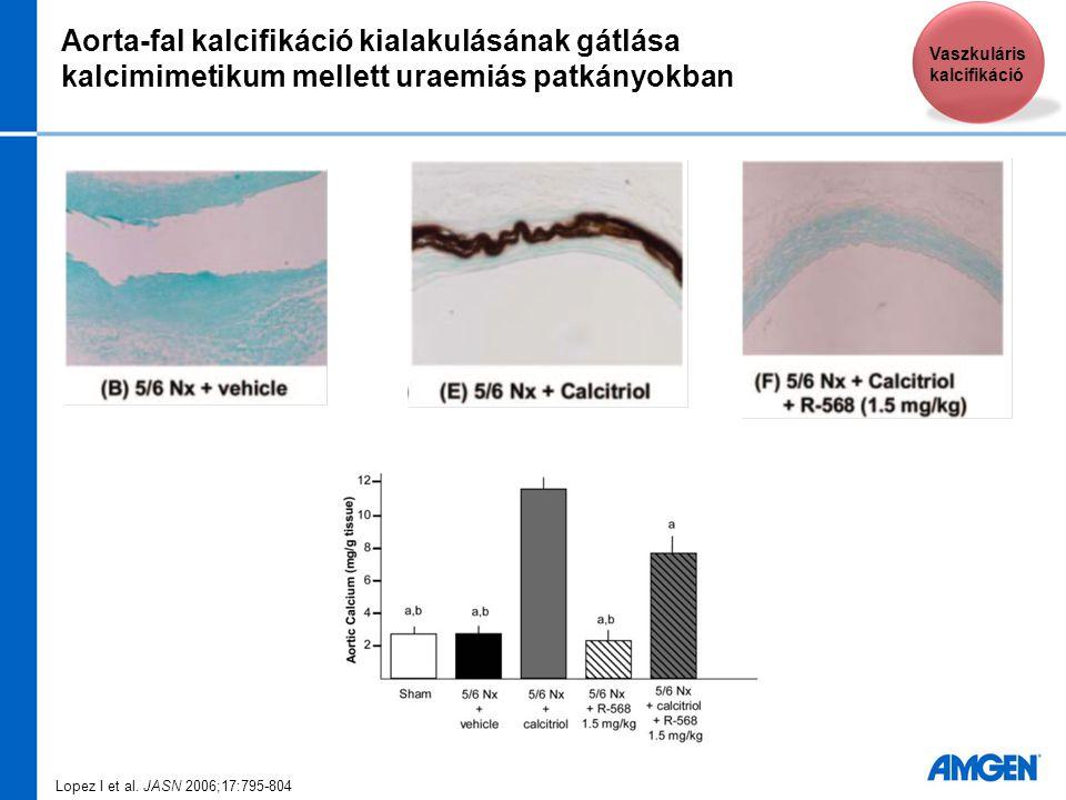 Aorta-fal kalcifikáció kialakulásának gátlása kalcimimetikum mellett uraemiás patkányokban Lopez I et al. JASN 2006;17:795-804 Vaszkuláris kalcifikáci
