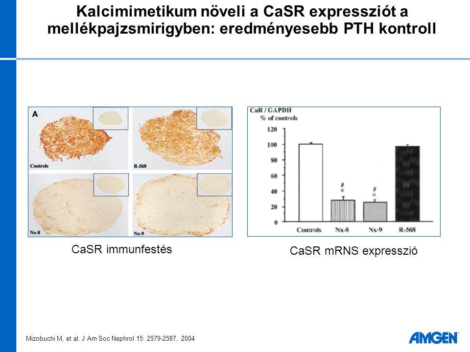 A Mimpara alapú kezelés előnyösebb a vaszkuláris kalcifikációt tekintve (medián kezelési különbségek) Vaszkuláris kalcifikáció Raggi P, et al.