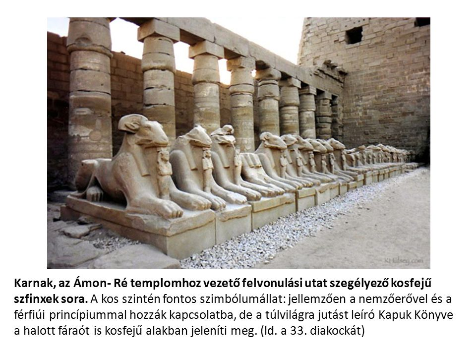 Karnak, az Ámon- Ré templomhoz vezető felvonulási utat szegélyező kosfejű szfinxek sora. A kos szintén fontos szimbólumállat: jellemzően a nemzőerővel