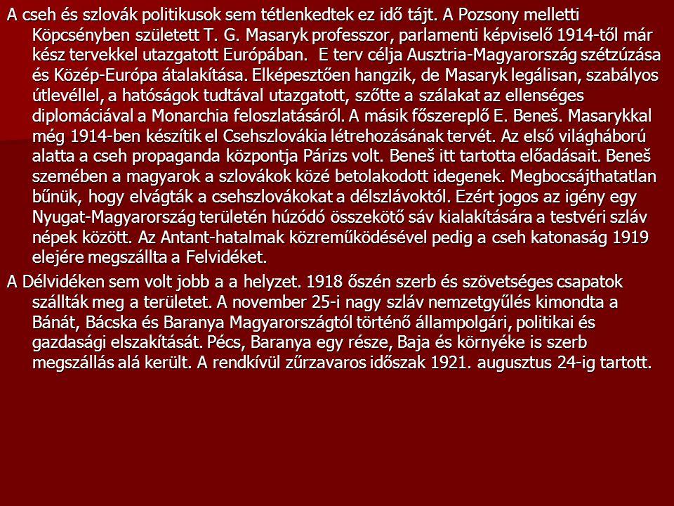 A cseh és szlovák politikusok sem tétlenkedtek ez idő tájt. A Pozsony melletti Köpcsényben született T. G. Masaryk professzor, parlamenti képviselő 19