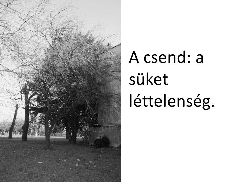 A csend: a süket léttelenség.