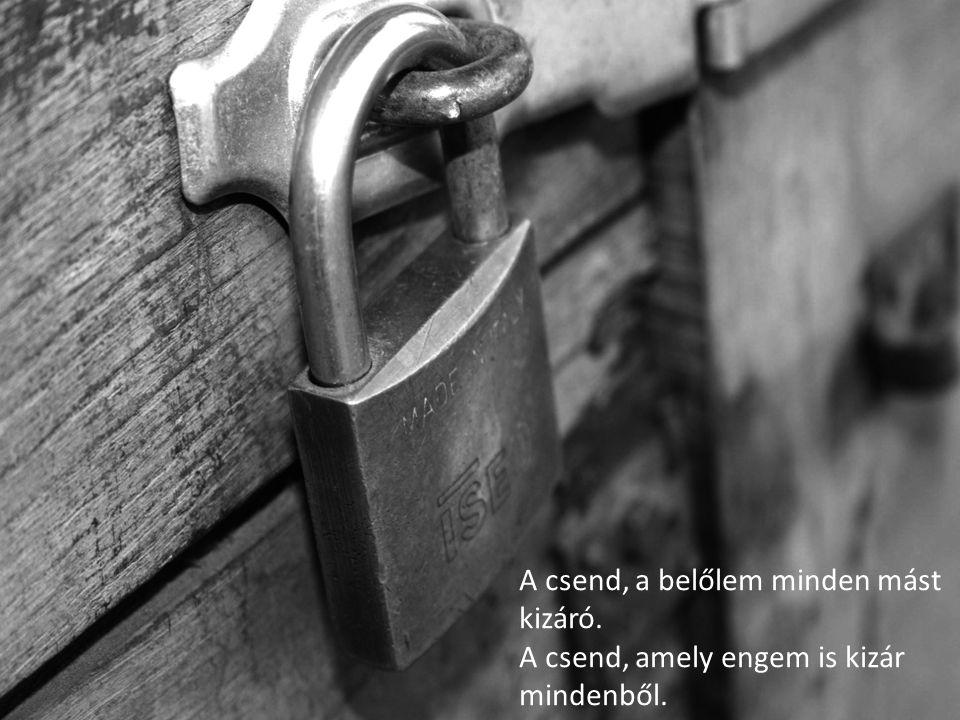 A csend, a belőlem minden mást kizáró. A csend, amely engem is kizár mindenből.