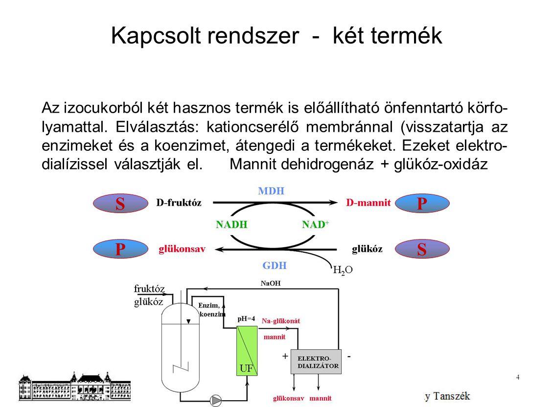 Kapcsolt rendszer - két termék Az izocukorból két hasznos termék is előállítható önfenntartó körfo- lyamattal. Elválasztás: kationcserélő membránnal (