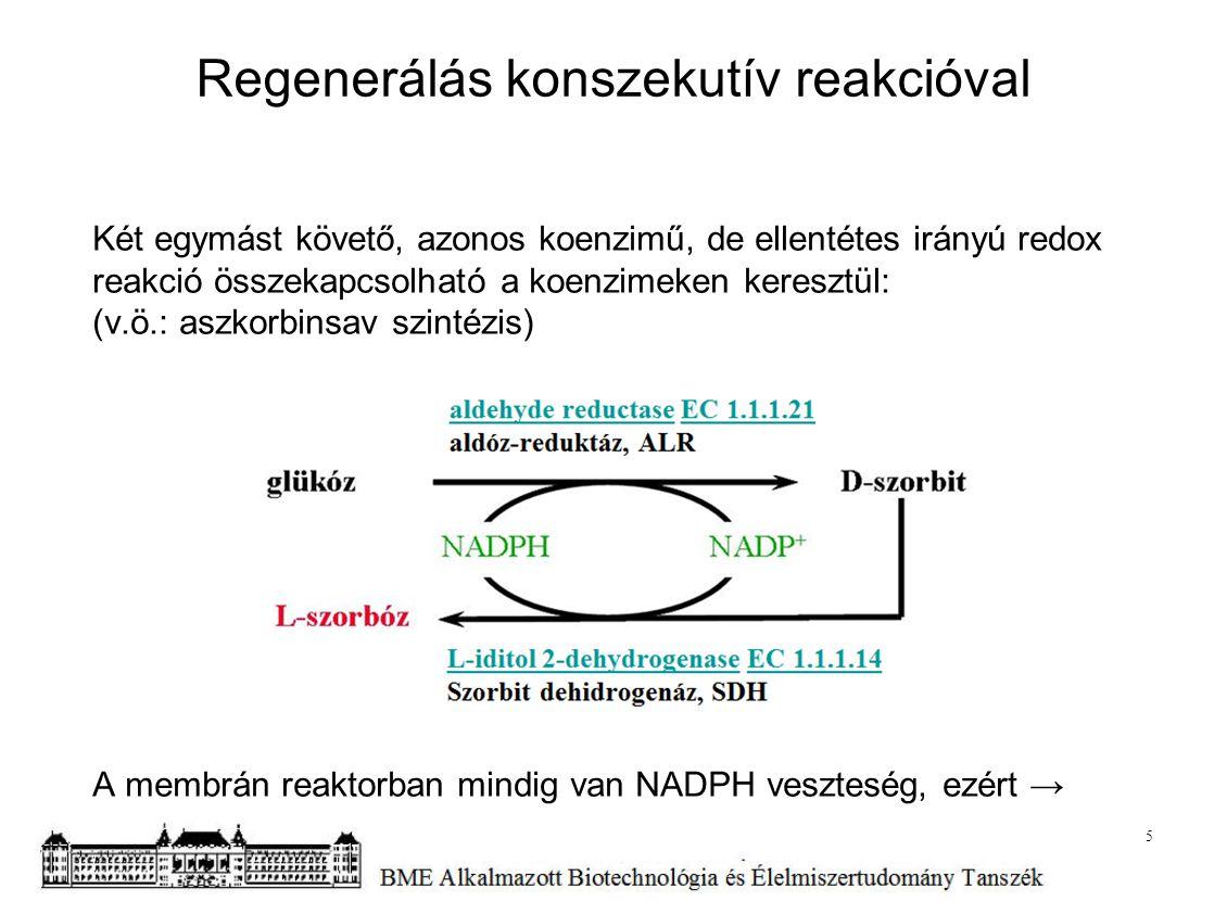 Két egymást követő, azonos koenzimű, de ellentétes irányú redox reakció összekapcsolható a koenzimeken keresztül: (v.ö.: aszkorbinsav szintézis) A mem