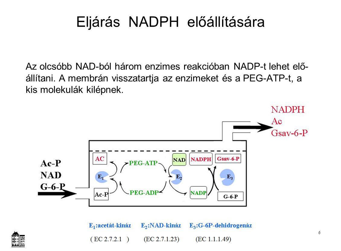 Az olcsóbb NAD-ból három enzimes reakcióban NADP-t lehet elő- állítani. A membrán visszatartja az enzimeket és a PEG-ATP-t, a kis molekulák kilépnek.