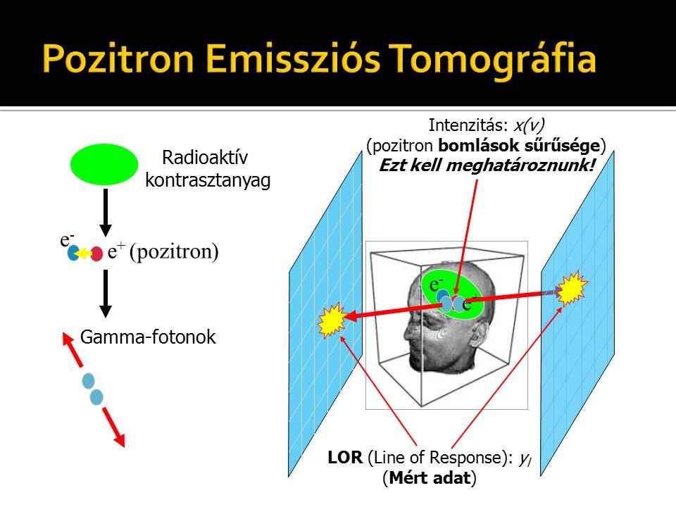LOR (Line of Response): y l (Mért adat)  A készülék az egyidejű fotonbecsapódásokat regisztrálja (számolja)  4D adat (modulonként 2-2 koordináta) Intenzitás: x(v) (pozitron bomlások sűrűsége) Ezt kell meghatároznunk!