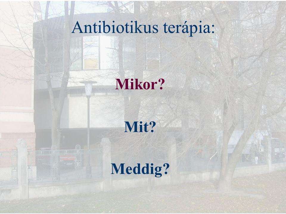 Antibiotikus terápia: Mikor? Mit? Meddig?
