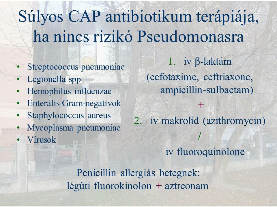 Súlyos CAP antibiotikum terápiája, ha nincs rizikó Pseudomonasra Streptococcus pneumoniae Legionella spp Hemophilus influenzae Enterális Gram-negatívo