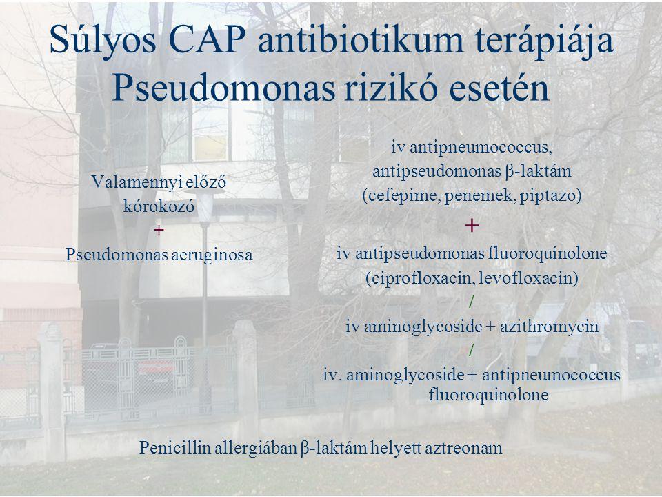 Súlyos CAP antibiotikum terápiája Pseudomonas rizikó esetén Valamennyi előző kórokozó + Pseudomonas aeruginosa iv antipneumococcus, antipseudomonas β-