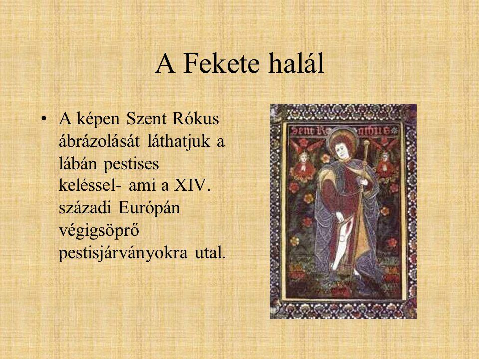 A Fekete halál A képen Szent Rókus ábrázolását láthatjuk a lábán pestises keléssel- ami a XIV.