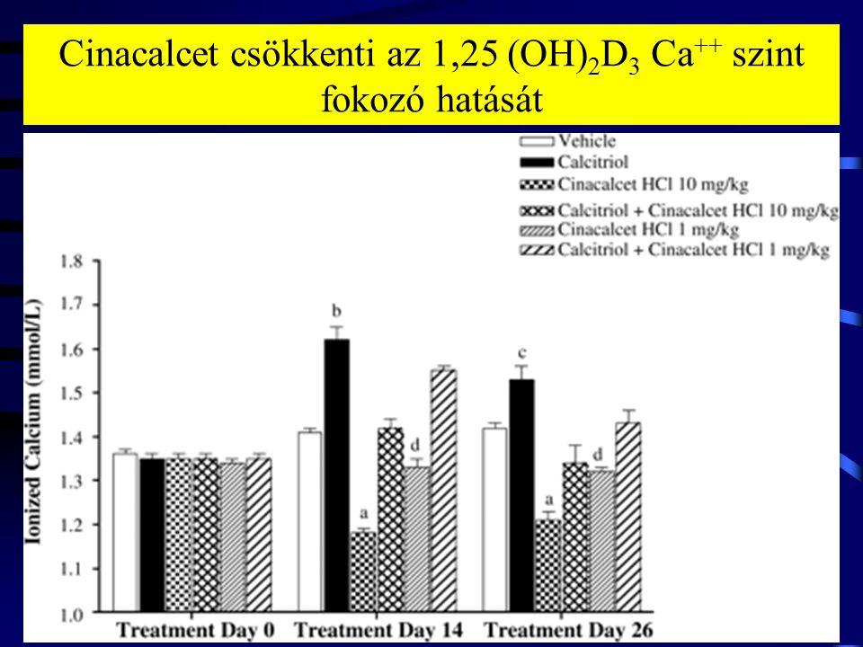 Cinacalcet csökkenti az 1,25 (OH) 2 D 3 Ca ++ szint fokozó hatását