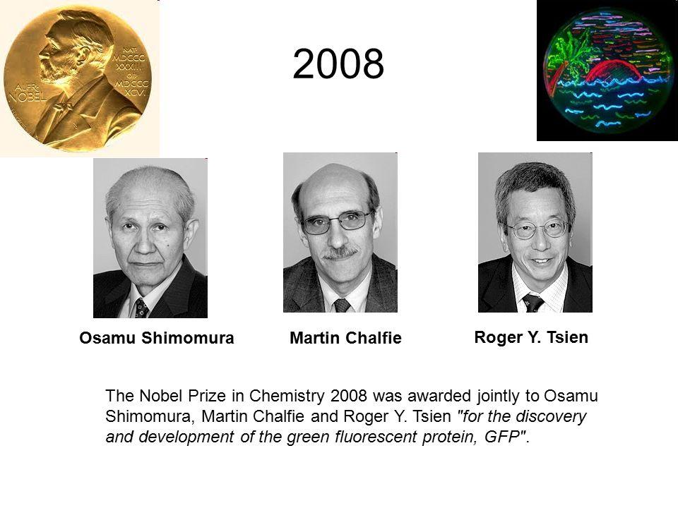Osamu Shimomura 1928, Kyoto, Japán 16 évesen túlélte Nagasaki bombázását Gyógyszerészetet (BSc) majd szerveskémiát (MSc, PhD) tanult Japánban 1960-tól a Princeton egyetemen az Auquorea Victoria medúza biolumineszenciájáért felelős fehérjéket kereste, és meg is találta: aequorin (blue luminescent protein) és GFP (green fluorescent protein) több tonna medúzát dolgozott fel 1972, GFP kromofór csoportjának jellemzése (nem kofaktor, hanem a fehérje egy részlete) 1995, aequorin szerkezetének meghatározás