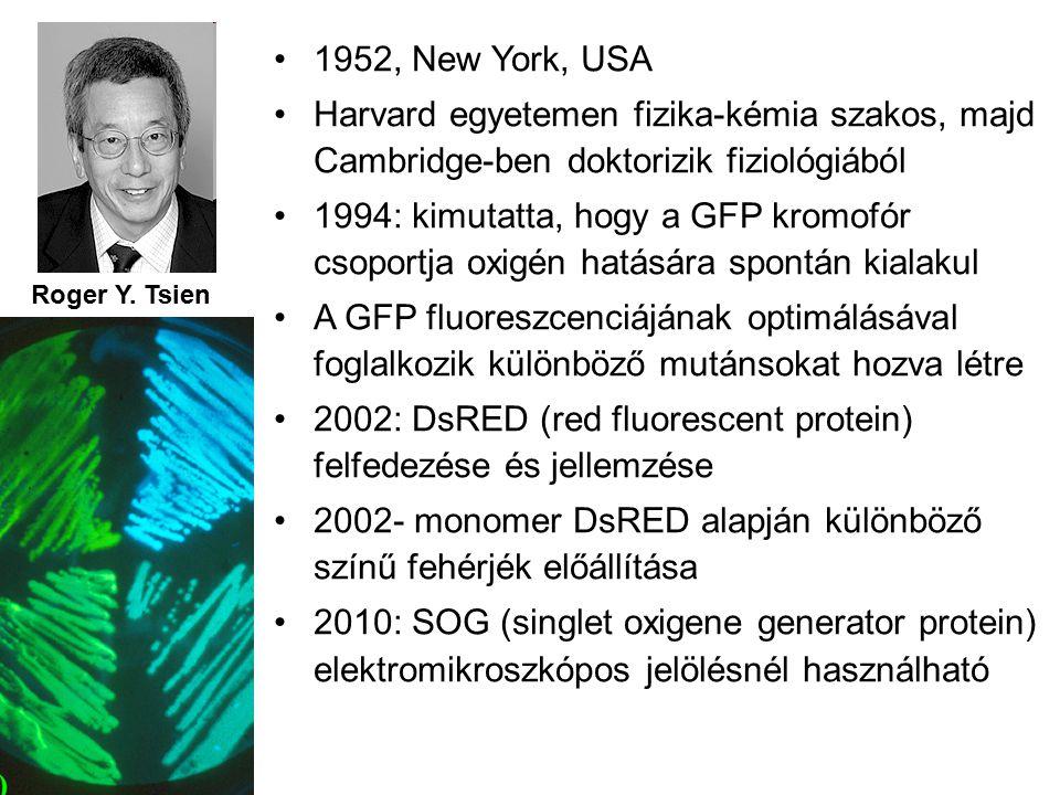 Roger Y.