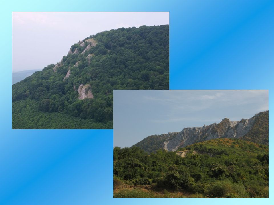 Földtörténet: paleozoikum végén, a karbon és a perm folyamán tengeri üledékes kőzetek (mészkő, agyagpala, homokkő) a mezozoikumban szintén sekélytengeri, illetve nyílttengeri üledékek triászban 3500 m összvastagságú karbonátos összlet keletkezett (rokonság a Dinaridák és a Dél Alpok kőzeteivel ) jura során mélyre süllyedt (kisgyőri aleuritpala) vulkánosság a triász és a jura folyamán (porfiroid kőzetek, szarvaskői ultrabázitok )