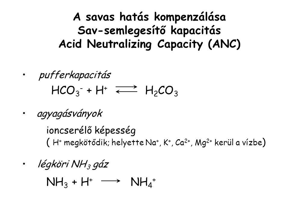 A savas hatás kompenzálása Sav-semlegesítő kapacitás Acid Neutralizing Capacity (ANC) H 2 CO 3 HCO 3 - + H + agyagásványok pufferkapacitás ioncserélő képesség ( H + megkötődik; helyette Na +, K +, Ca 2+, Mg 2+ kerül a vízbe ) légköri NH 3 gáz NH 3 + H + NH 4 +