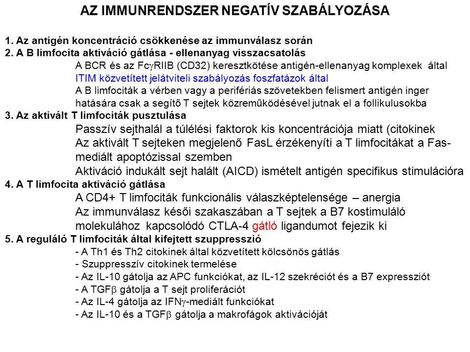 AZ IMMUNRENDSZER NEGATÍV SZABÁLYOZÁSA 1. Az antigén koncentráció csökkenése az immunválasz során 2. A B limfocita aktiváció gátlása - ellenanyag vissz