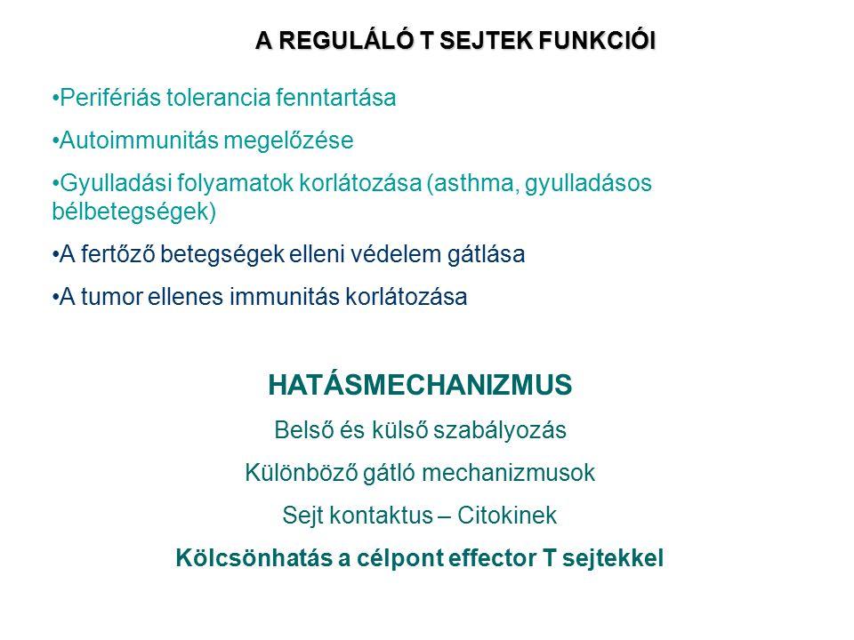 A REGULÁLÓ T SEJTEK FUNKCIÓI Perifériás tolerancia fenntartása Autoimmunitás megelőzése Gyulladási folyamatok korlátozása (asthma, gyulladásos bélbete