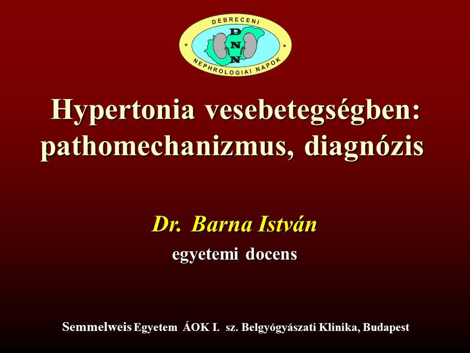 Hypertonia vesebetegségben: pathomechanizmus, diagnózis Dr. Barna István egyetemi docens Semmelweis Egyetem ÁOK I. sz. Belgyógyászati Klinika, Budapes