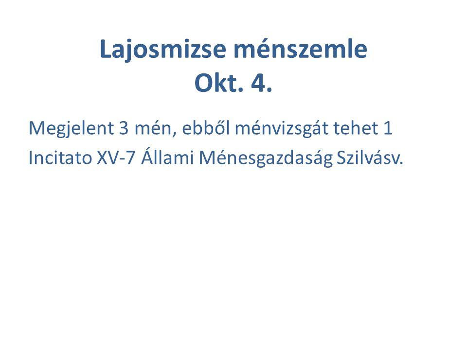 Lajosmizse ménszemle Okt. 4. Megjelent 3 mén, ebből ménvizsgát tehet 1 Incitato XV-7 Állami Ménesgazdaság Szilvásv.