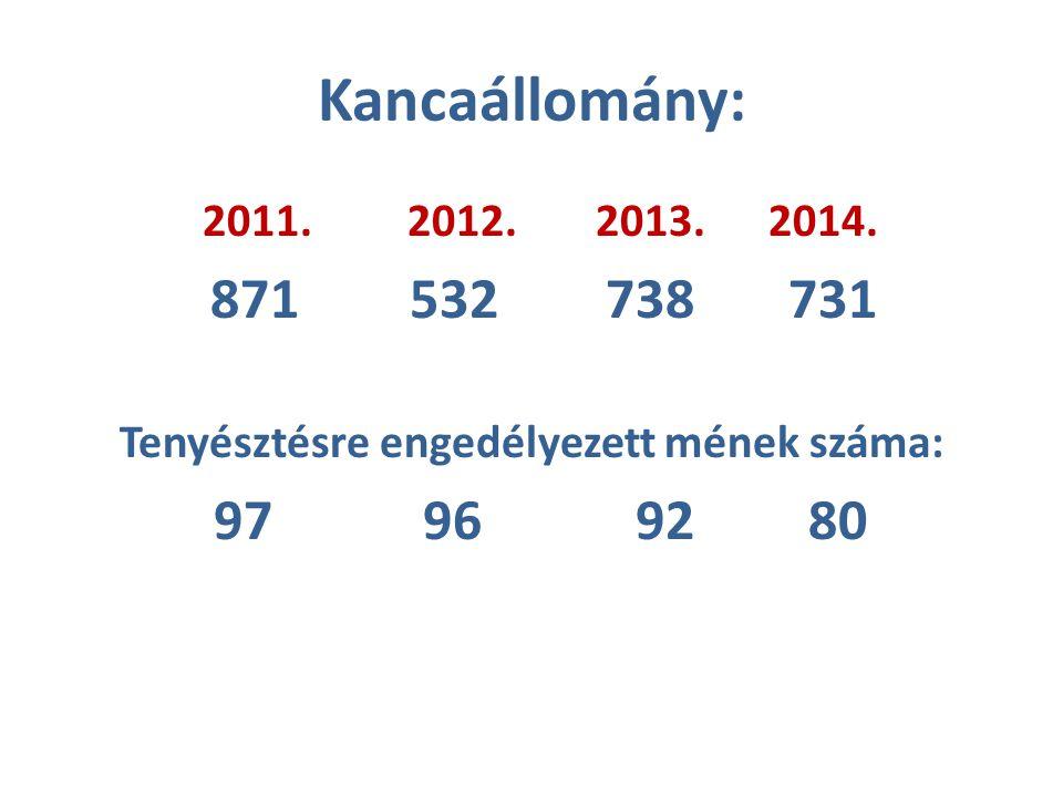 Kancaállomány: 2011. 2012.2013. 2014. 871 532 738 731 Tenyésztésre engedélyezett mének száma: 97 96 9280