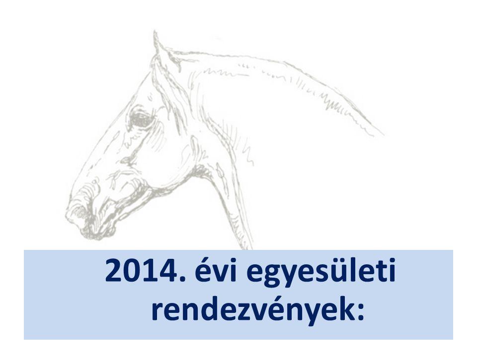 2014. évi egyesületi rendezvények: