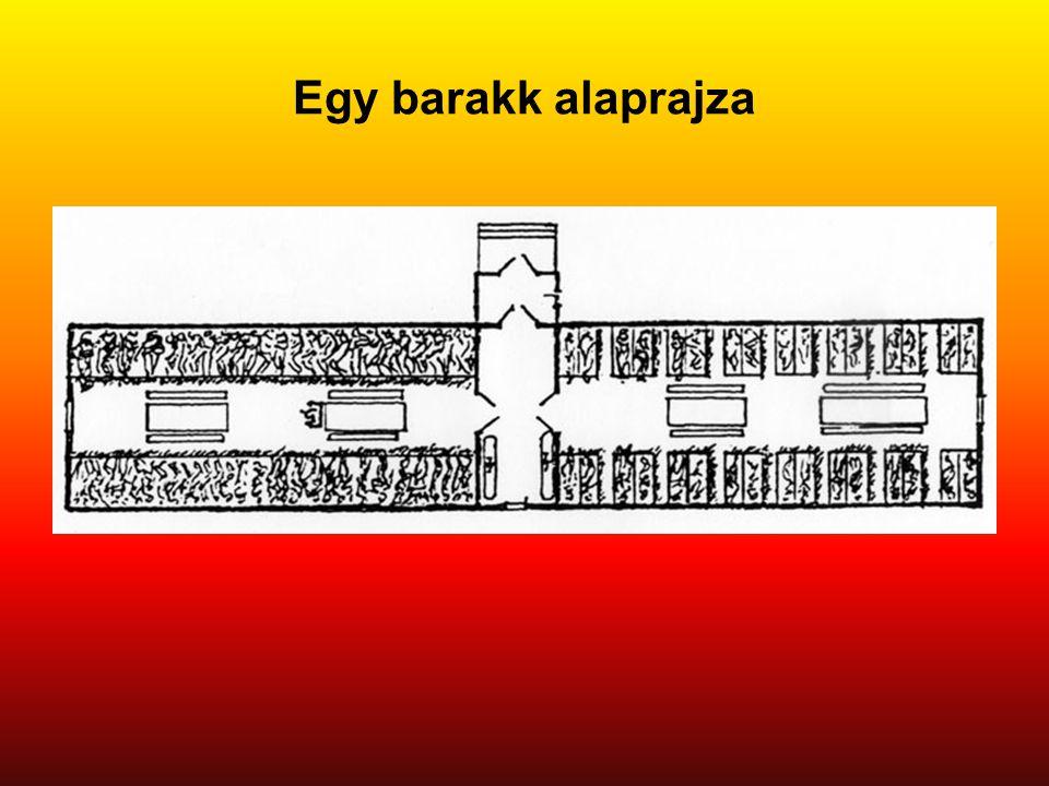 Egy barakk alaprajza