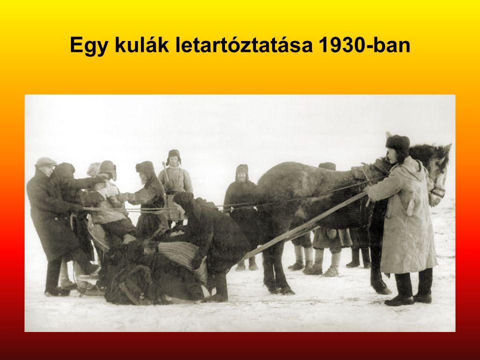 Egy kulák letartóztatása 1930-ban