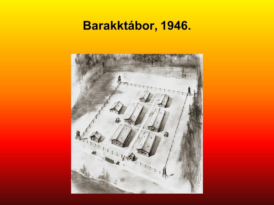 Barakktábor, 1946.