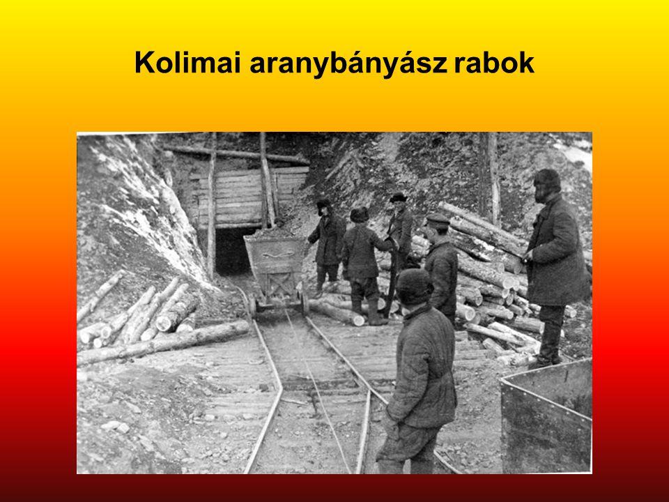 Kolimai aranybányász rabok