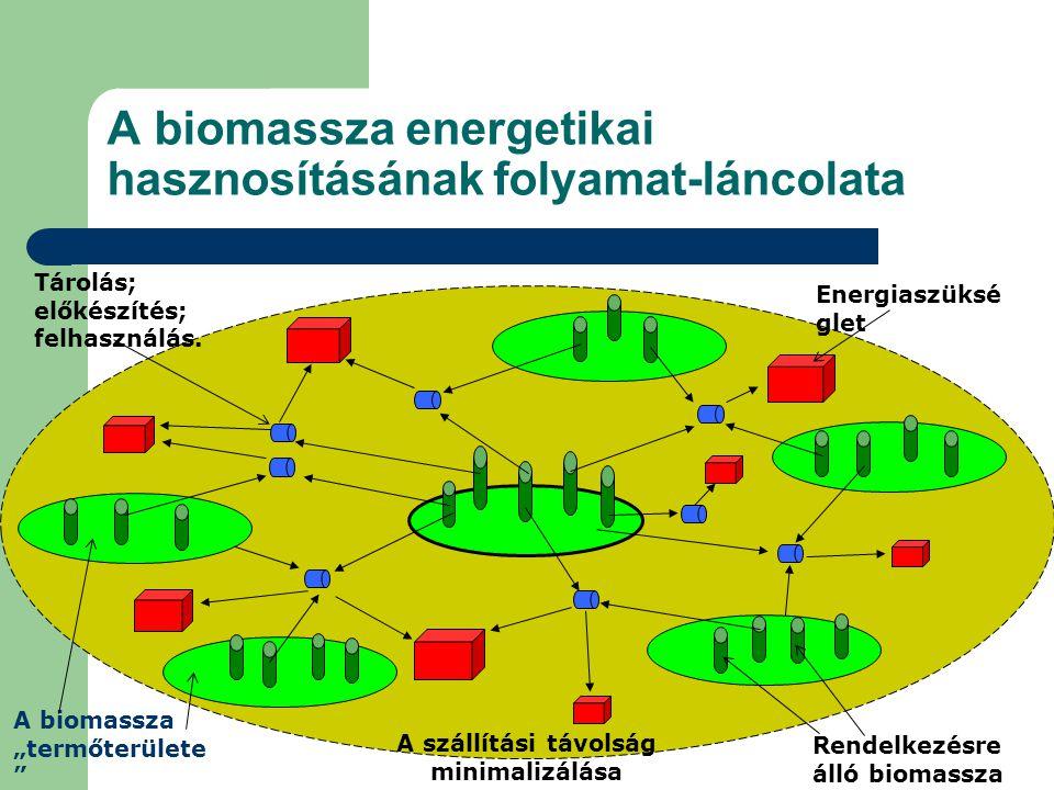 A biomassza energetikai hasznosításának folyamat-láncolata Energiaszüksé glet Rendelkezésre álló biomassza Tárolás; előkészítés; felhasználás.