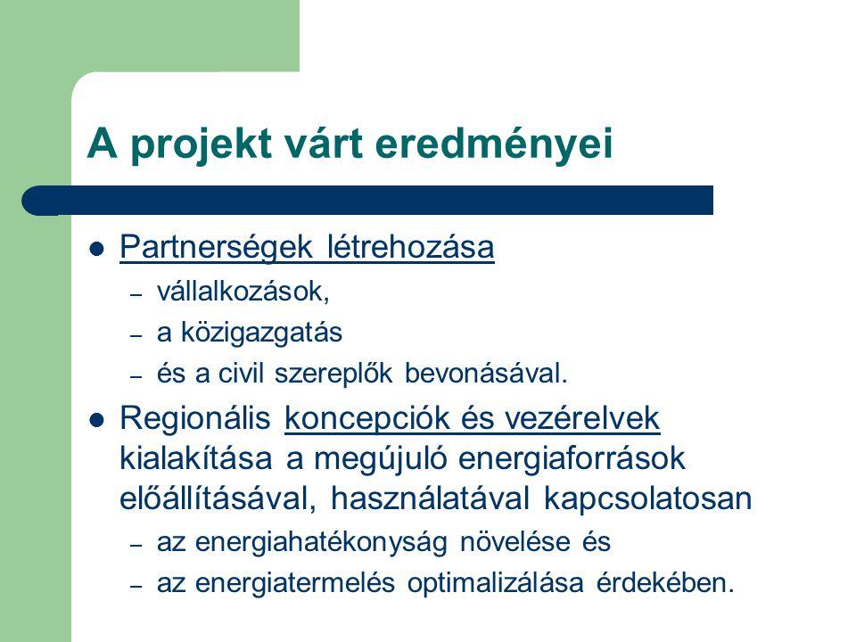 A projekt várt eredményei Partnerségek létrehozása – vállalkozások, – a közigazgatás – és a civil szereplők bevonásával. Regionális koncepciók és vezé