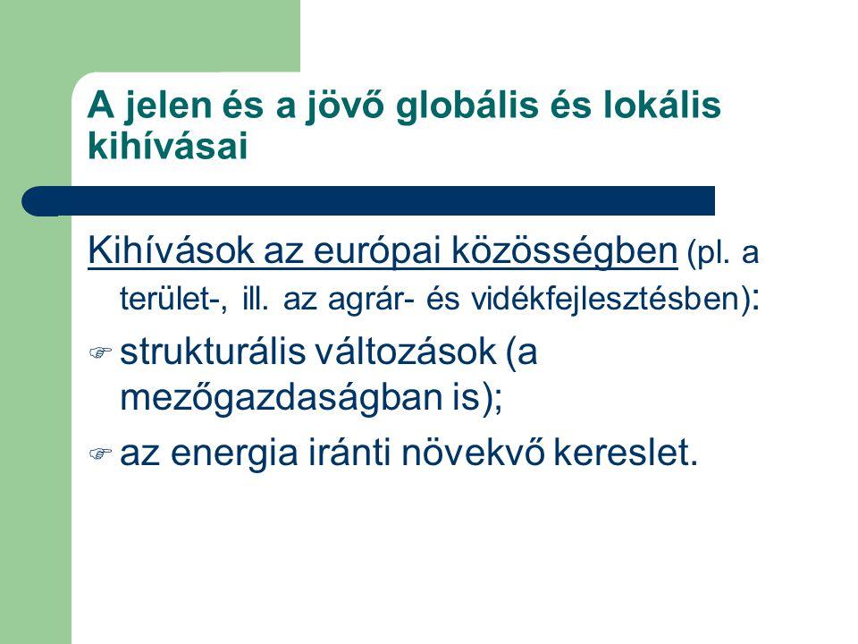 A jelen és a jövő globális és lokális kihívásai Kihívások az európai közösségben (pl. a terület-, ill. az agrár- és vidékfejlesztésben) :  strukturál