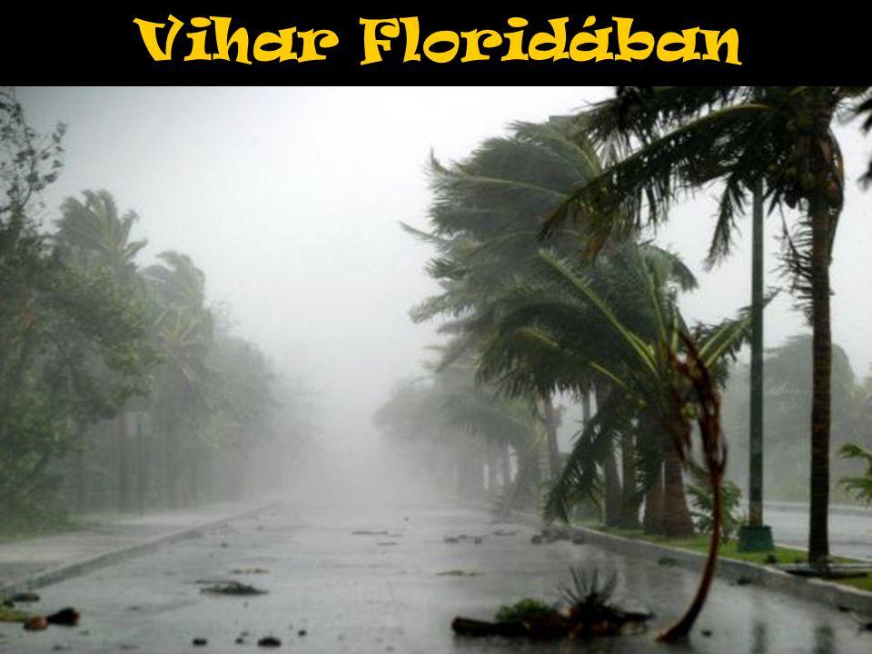 Vihar Floridában