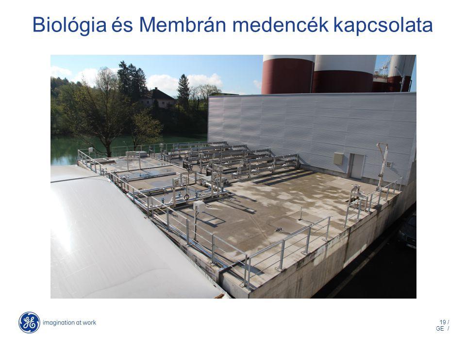 19 / GE / Biológia és Membrán medencék kapcsolata