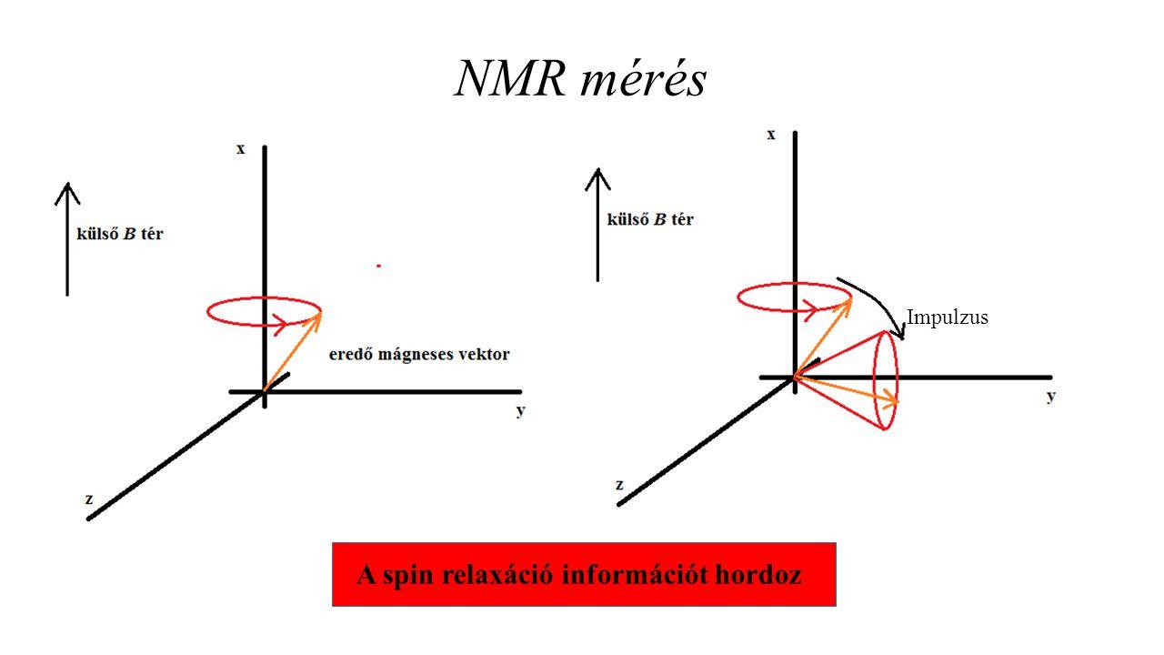 NMR mérés Impulzus A spin relaxáció információt hordoz