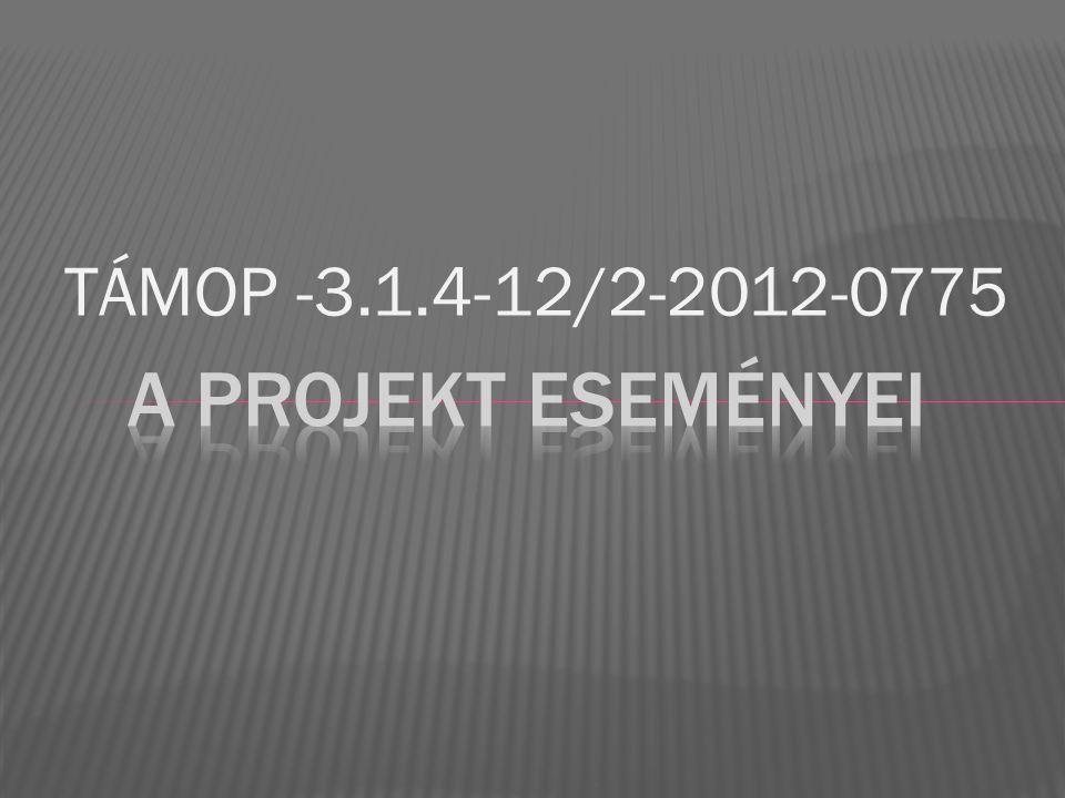 TÁMOP -3.1.4-12/2-2012-0775