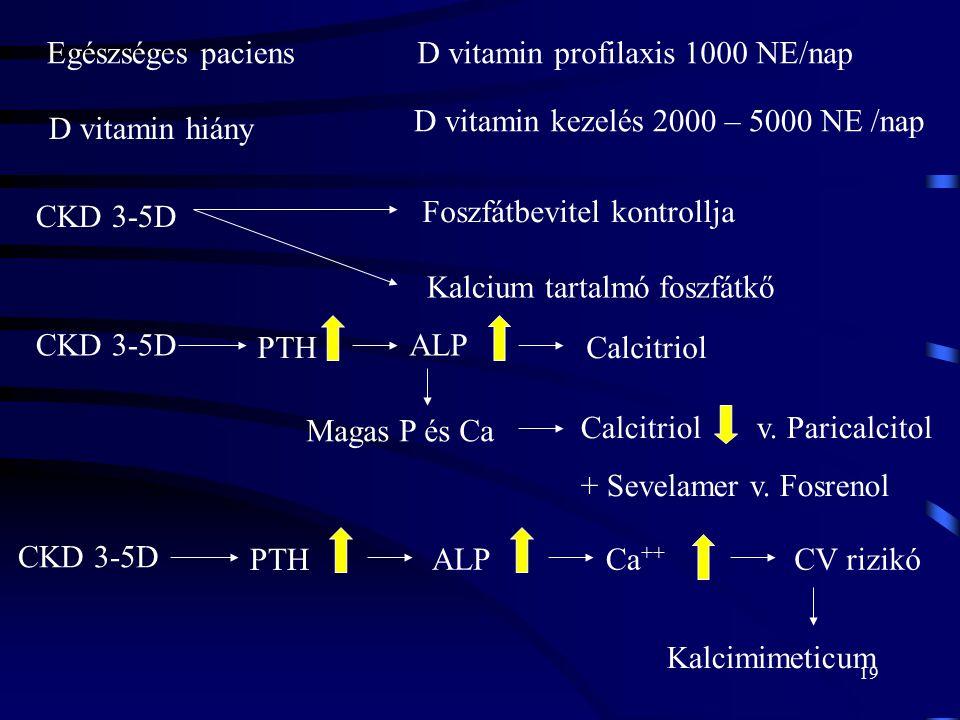 19 CKD 3-5D Foszfátbevitel kontrollja Egészséges paciensD vitamin profilaxis 1000 NE/nap D vitamin hiány D vitamin kezelés 2000 – 5000 NE /nap Kalcium