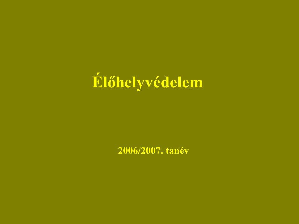 Élőhelyvédelem 2006/2007. tanév